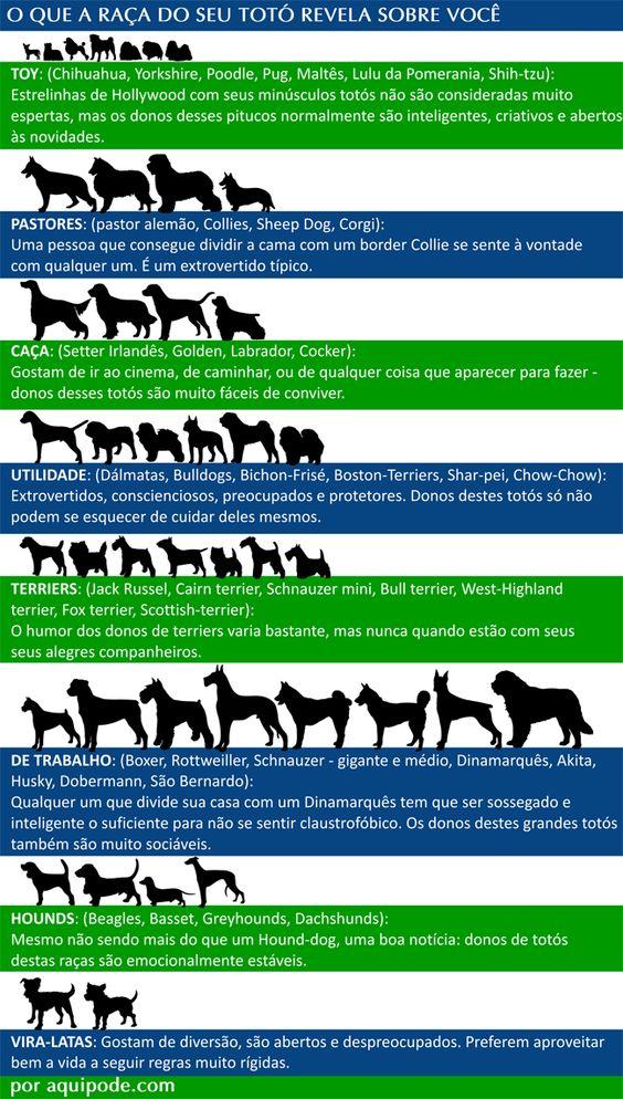 O que a raça do seu cachorro diz sobre você.