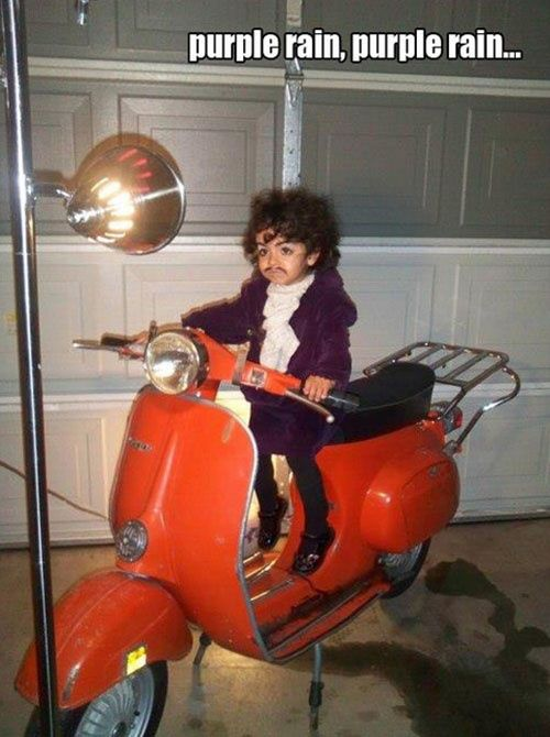 Li'l Prince in Purple Rain