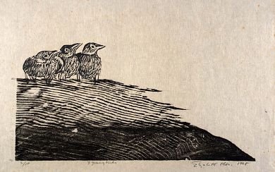 Three Young Birds by Elizabeth Olds / woodcut