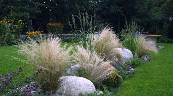 gräser im garten - Bing Bilder Garten Pinterest Bing bilder - moderner garten mit grasern