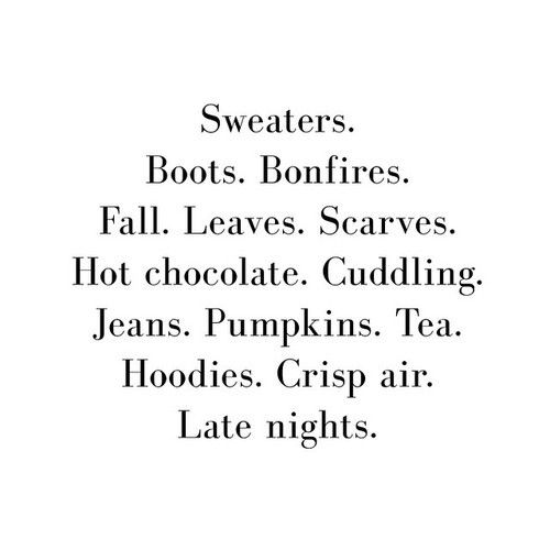 Sweaters. Boots. Bonfires. Fall. Leaves. Scarves. Hot chocolate. Cuddling