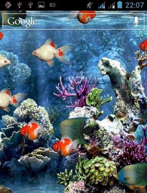 Pin On Wallpaper Aquarium Live Wallpaper Animated Wallpapers For Mobile Live Wallpapers Best android live wallpaper tablet