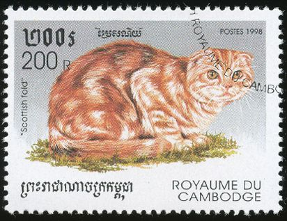 Cambodia 1998 Cat Stamps - Scottish Fold
