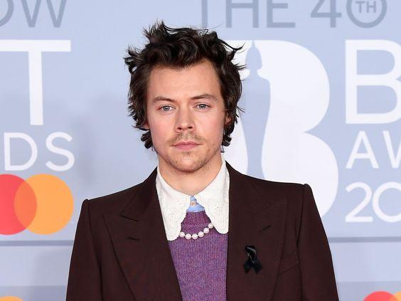 Know Singer Songwriter Harry Styles Bio, Age, Net Worth, Music Career