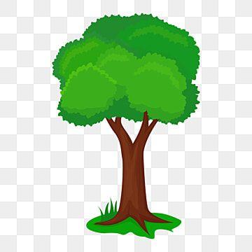 شجرة واحدة التوضيح الكرتون شجرة المرسومة Png شجرة طبيعة Png والمتجهات للتحميل مجانا In 2021 Leaf Illustration Cartoon Trees Tree Drawing