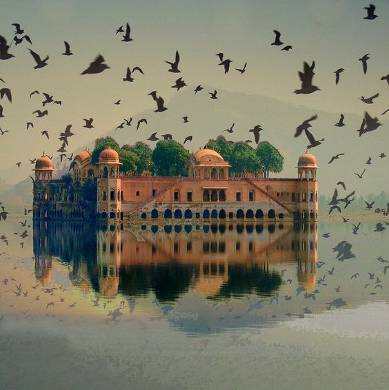 Jal Mahal (the Water Palace) is a palace located in the middle of the Man Sagar Lake in Jaipur city, the capital of the state of Rajasthan, India  #palace #spaces #culture #ruyal #colour #heritage #royal #timeless #red #beautiful: