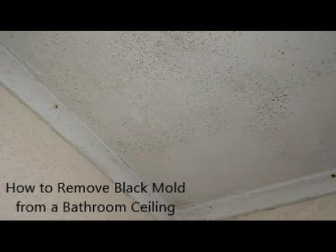 How To Remove Black Mold From A Bathroom Ceiling Mold On Bathroom Ceiling Bathroom Ceiling Remove Black Mold