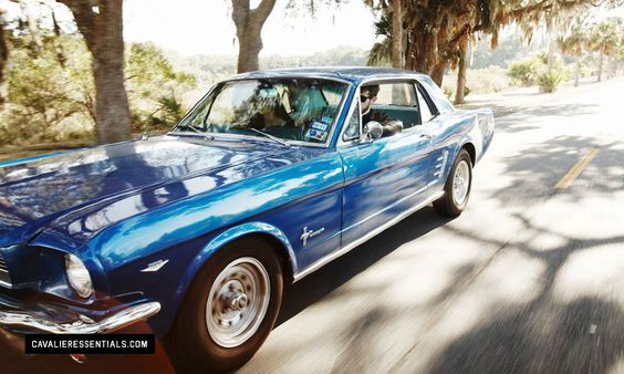 Gallery For > 1965 Blue Mustang From The Outsiders