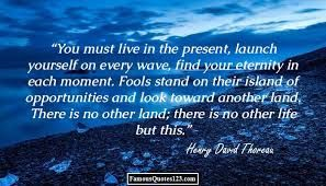 blogmonkey: H.D.Thoreau. WALDEN: Chapter VIII: The Village