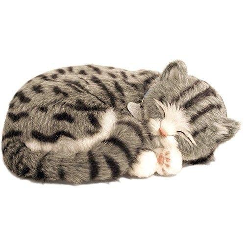 Perfect Petzzz Gato Gray Tabby - Imex