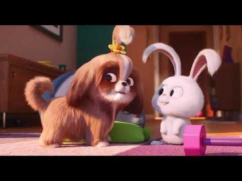 Pets 2 Vita Da Animali Conoscete Capitan Nevosetto Animali Capitan Conoscete Nevosetto Pets Vita In 2020 Secret Life Of Pets Cute Bunny Cartoon Pets Movie