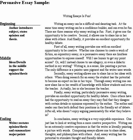 Persuasive Essay Example College Level Best Of 5th Grade Writing Essays