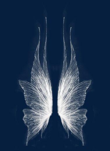 As Asas Fairy Wings Drawing Wings Drawing Wings Art