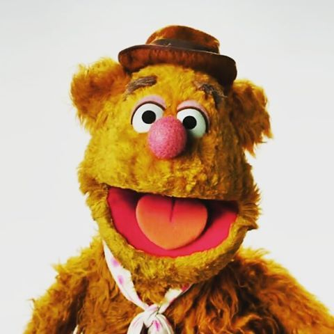 """""""Fozzie just got his fur trimmed before our new show #TheMuppets premieres. What do you guys think?"""""""