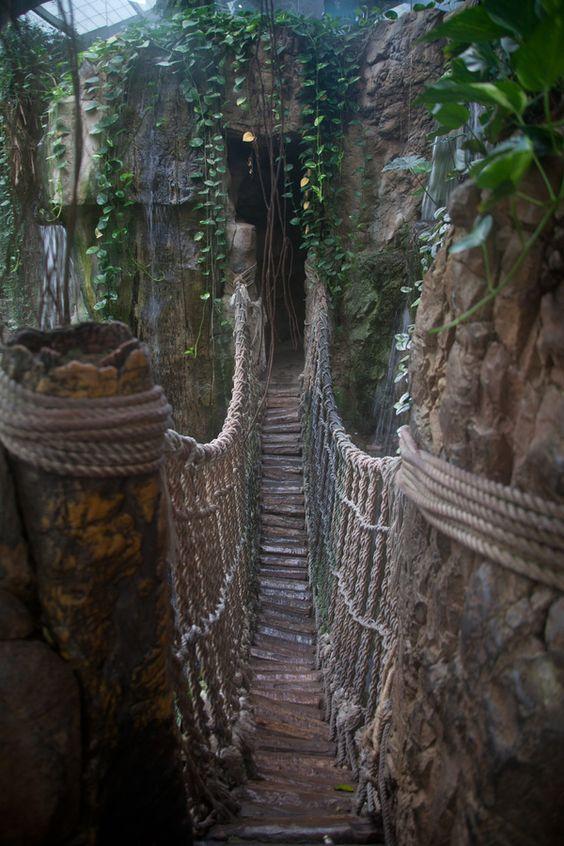 Bridge in the Rain Forest at the Henry Doorly Zoo in Omaha, Nebraska: