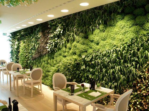 Jardins verticais jardim das ideias stihl dicas de for Paisagismo e jardinagem