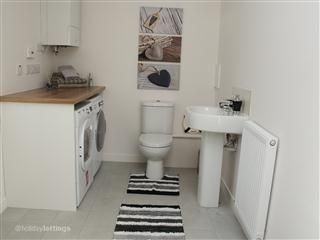Downstairs toilet/utility room