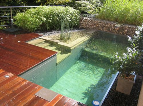 One elegant and eco friendly european option gaining popularity in the u s is the idea of for Environmentally sustainable swimming pools