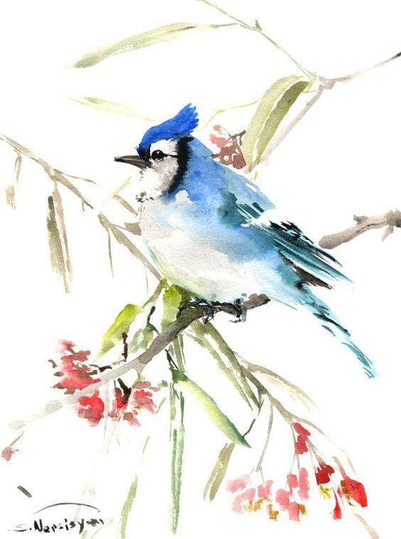 Geai bleu aquarelle originale peinture 12 x 9 en art - Bleu vintage peinture ...