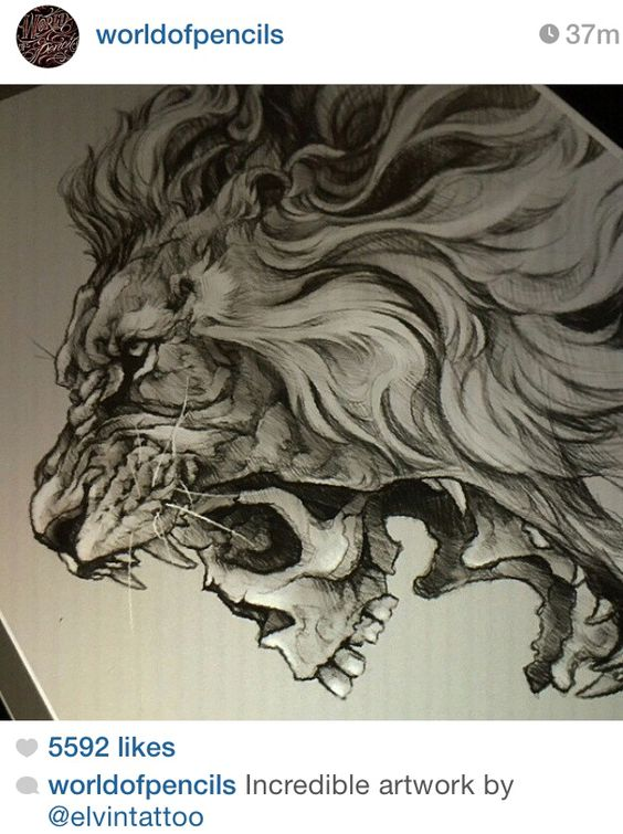 Lion Ass 32