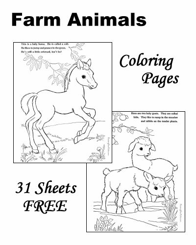 farm animal coloring pages chickens cows horses goats and more coloring pages. Black Bedroom Furniture Sets. Home Design Ideas