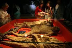 museo de guanajuato - Google Search