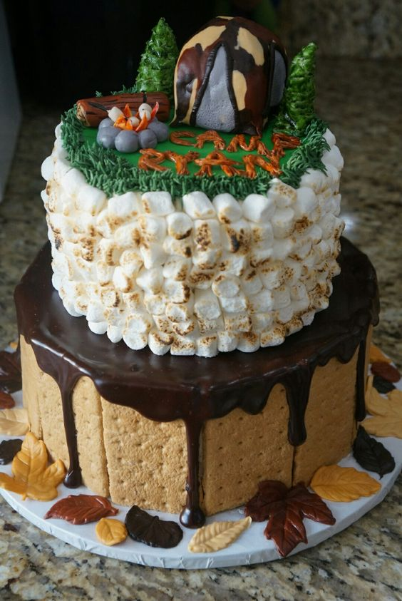 Camping theme smores birthday cake boys guys ideas:
