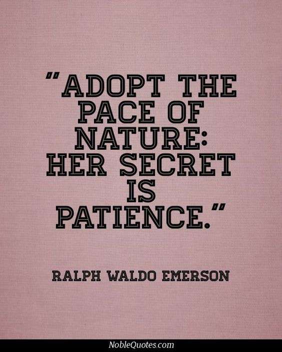 emerson nature quotes essay
