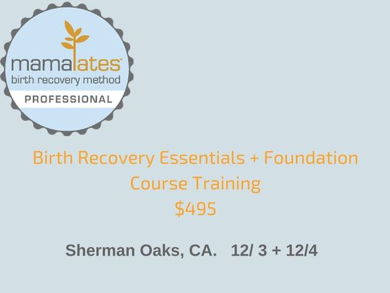 Birth Recovery Professional Training