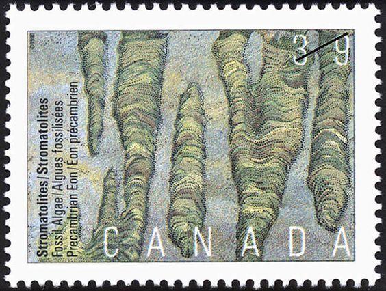 Stamp: Stromatolites, Fossil Algae, Precambrian Eon (Canada) (Prehistoric Canada (1st series), Primitive Life) Mi:CA 1187,Sn:CA 1281,Yt:CA 1149,Sg:CA 1390