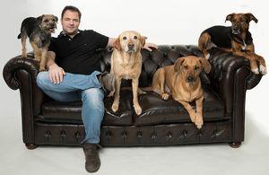 Hunde Mussen Vor Allem Geduld Lernen Menschen Aber Auch Hunde Hund Und Katze Hundchen Training