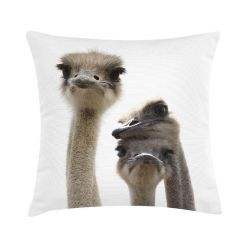 Bloomingville / Bavlněný polštář Ostrich 45x45