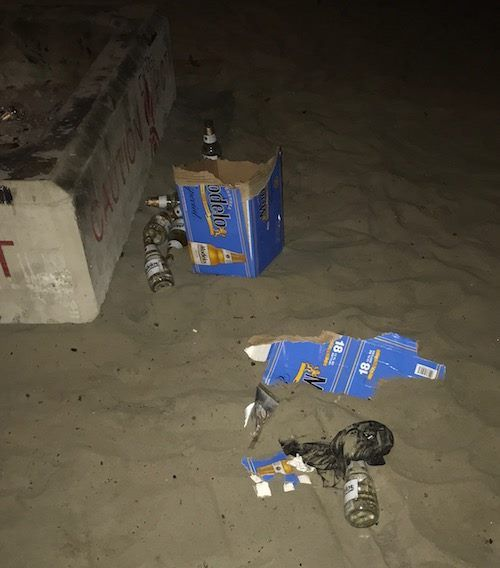 19 Reasons Why Drinking On The Beach Is Harmful With Images Beer Glass Beer Bottle Beach