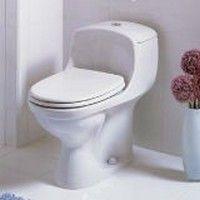 Comment Déboucher les WC avec une Bouteille en Plastique ?