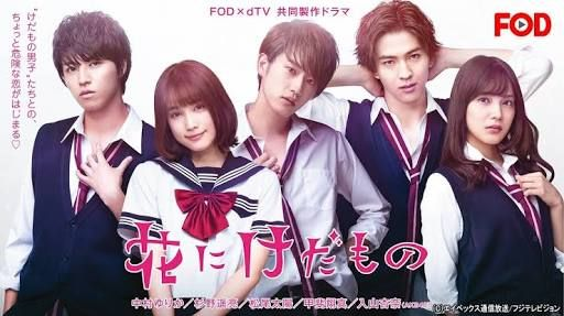 drama the flowers and the beast korean drama tv japanese drama japanese movies