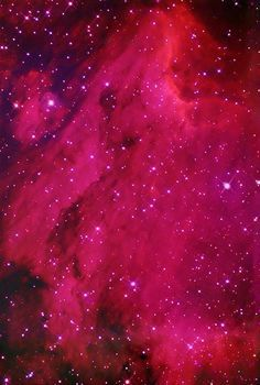 Have you ever see such RED? The Pelican Nebula, associated with the North…
