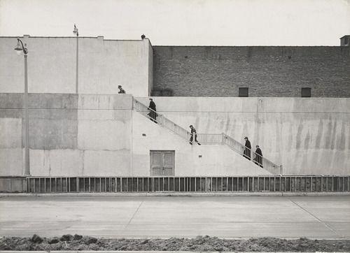 Harry Callahan, Photograph