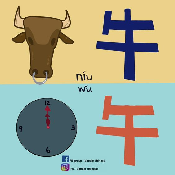 niu and wu