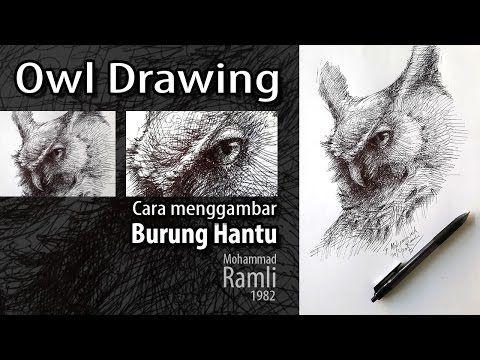 Cara Menggambar Burung Hantu Owl Drawing Youtube Drawings