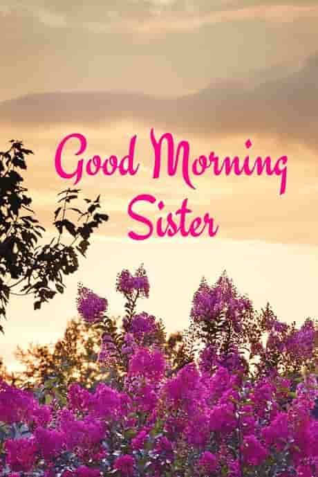 120 Lovely Good Morning Wishes And Greetings For Sister Good Morning Sister Images Good Morning Sister Quotes Good Night Sister