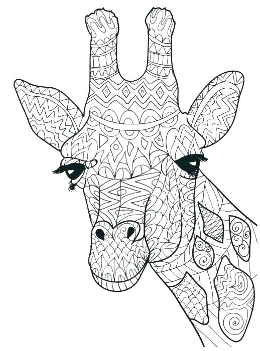 Cute Giraffe Coloring Pages Pdf Printable Free Coloring Sheets Giraffe Coloring Pages Animal Coloring Pages Giraffe Colors