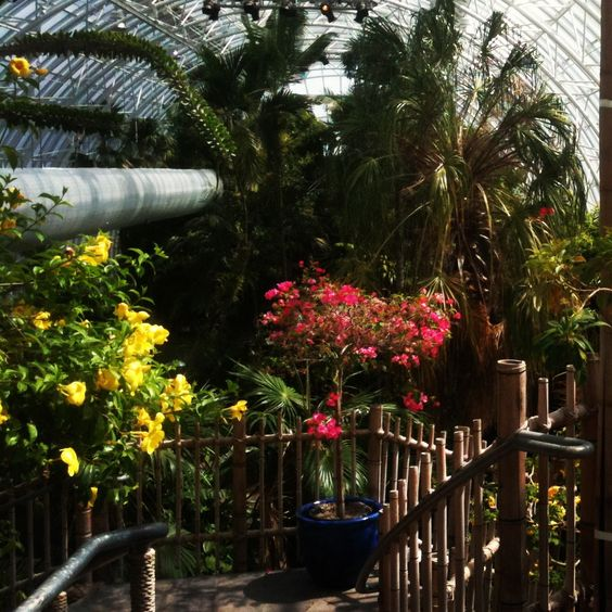 Oklahoma City Botanical Garden | Travel | Pinterest | Oklahoma City And City
