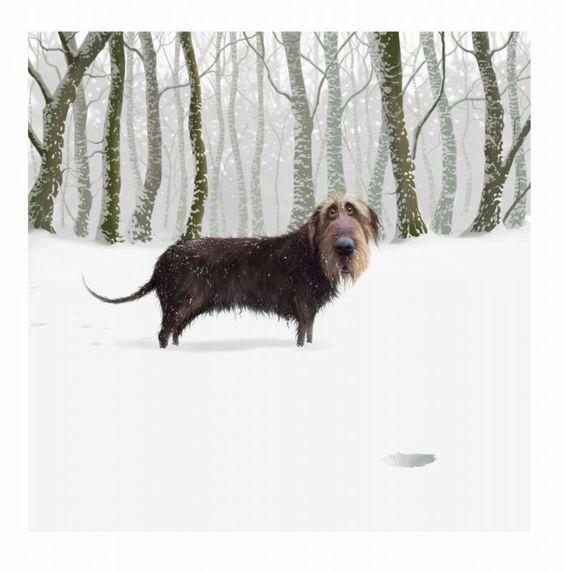 The Lost Ball By Stephen Hanson Art Artist Digital Dog Eyes Appealing Mischief Ball Game Games Dogwalking S Dog Paintings Dog Illustration Dog Art