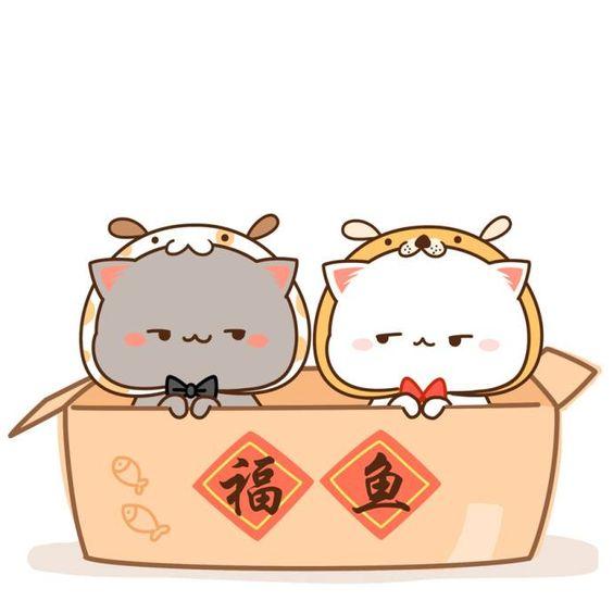 CATS KAWAII