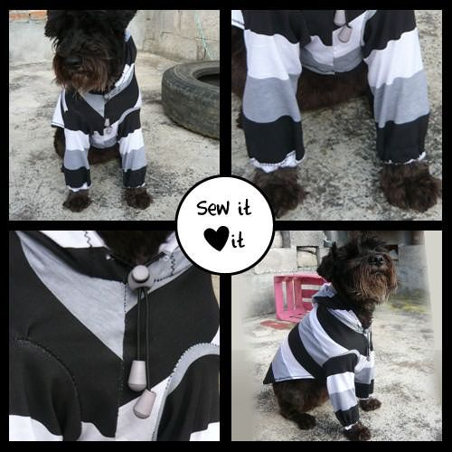 Sew a Sports Hoodie  Free Dog Clothes Patterns
