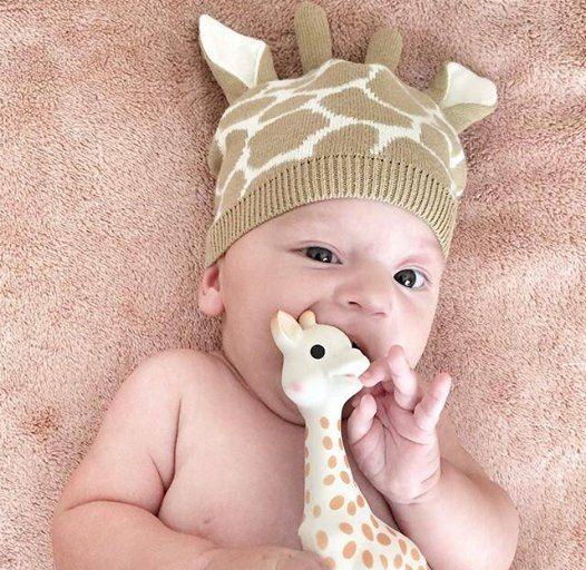 photo drole de sophie la girafe