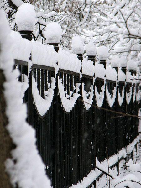 Snow: Snow Fence, Snow Sculpture, Black And White, Winter Wonderland, Snow Garland, Black White, Winter Black, Iron Fence