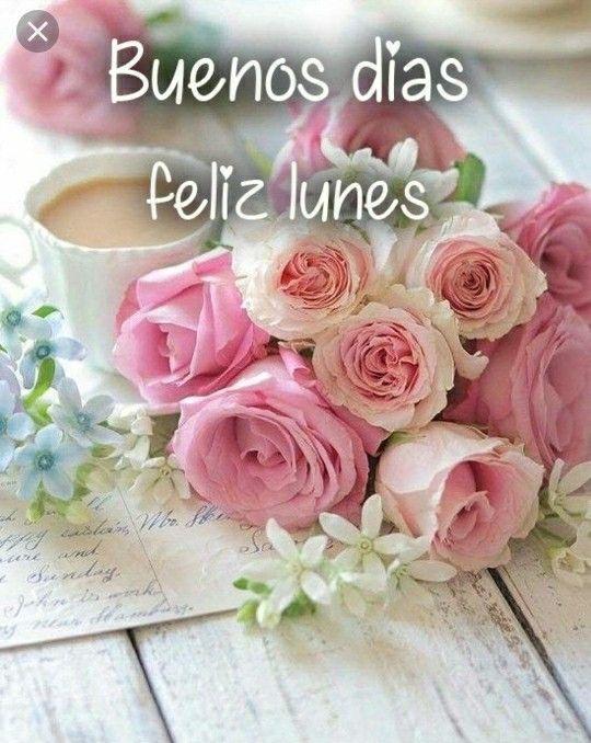 Feliz Lunes Con Lindo Ramo De Flores Feliz Lunes Reflexiones