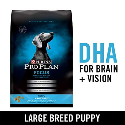 Purina Professional Plan Massive Breed Dry Pet Meals Focus