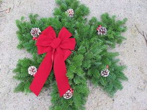 Snowflake Wreath: Holiday Wreaths, Outdoor Wreaths, Christmas Crafts, Christmas Wreath Ideas, Christmas Holidays, Crafts Wreaths, Fresh Christmas Wreaths, Christmas Ideas, Christmas Door